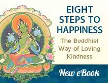 Download Eight Steps to Happiness eBook