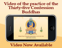 Video of the practice of the Thirty-five Confession Buddhas